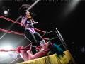 Bodyslammer ringside WM-195
